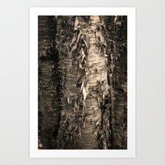 Life's a Birch Art Print