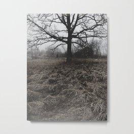 1000 Trees Metal Print
