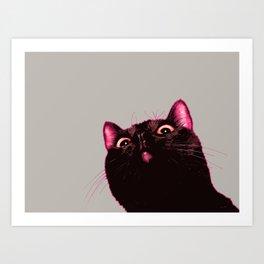 Curious cat, Black cat, Pop Art cat. Art Print