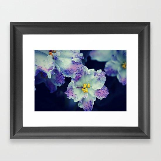 Spring Flower 09 Framed Art Print