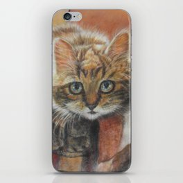 Cat Art - Cute Cat looking at you iPhone Skin