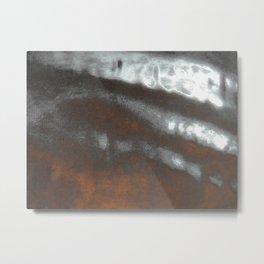 14 Metal Print