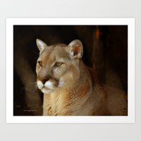 panther Art Prints featuring Panther by DiDi Higginbotham