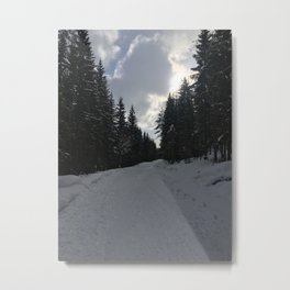 Cold forest Metal Print