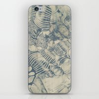 shells iPhone & iPod Skins featuring Shells by Laura Braisher