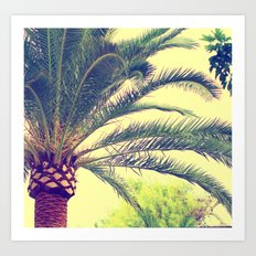 Summer feeling, palm trees in the south Art Print