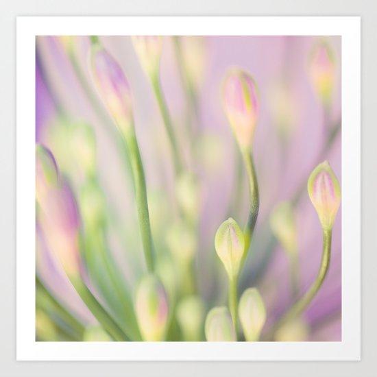 Lavender Nile Art Print