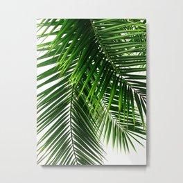 Palm Leaves #3 Metal Print