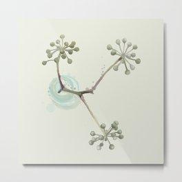 Seedpods Metal Print