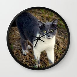 I'm not looking for any trouble . . .  Wall Clock