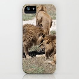 Male Lions iPhone Case
