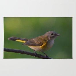 A Female American Redstart 2 Rug