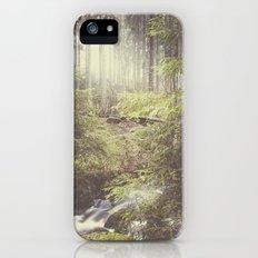The paths we wander III Slim Case iPhone (5, 5s)