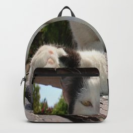 Black and White Bicolor Cat Lounging on A Park Bench Backpack
