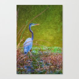 In the reeds Canvas Print