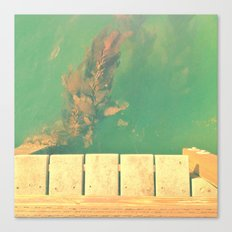 The California Summer Series // Seaweed Canvas Print