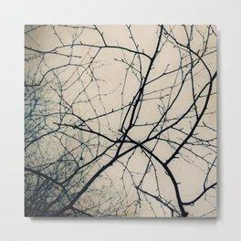 Beneath Bare Branches Metal Print