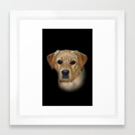 golden labrador Framed Art Print