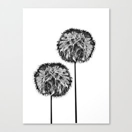 Dark seed Canvas Print