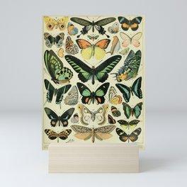 Butterflies Vintage Illustration Mini Art Print