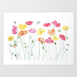 colorful poppies watercolor  horizontal Art Print