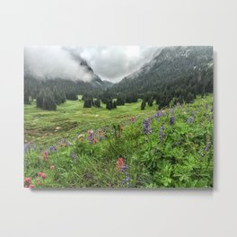 Berkeley Park, Mt. Rainier, Wildflowers Metal Print