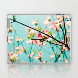Aqua Spring Laptop & iPad Skin