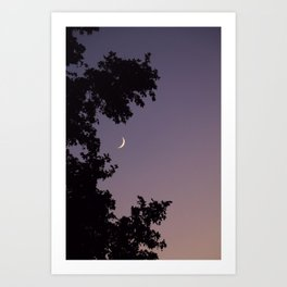 Smile Moon Art Print