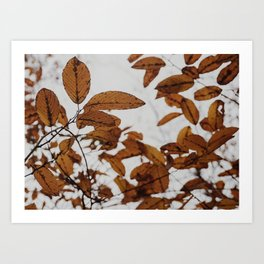 Fall Details Art Print