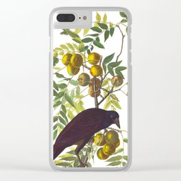 American Crow Vintage Bird Illustration Clear iPhone Case
