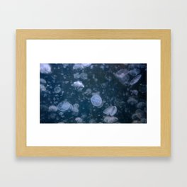 Swarm in the Blue Framed Art Print