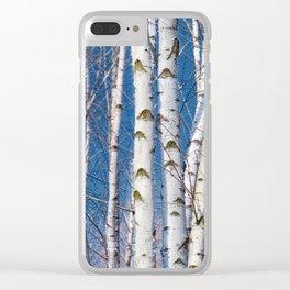 Birches 26 Clear iPhone Case