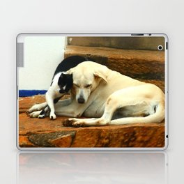 Like cats and dogs Laptop & iPad Skin
