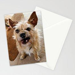 Grumpy Dog Stationery Cards