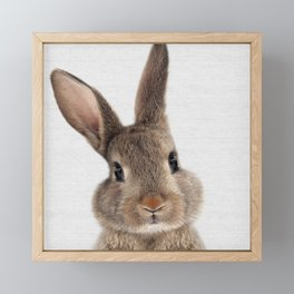 Baby Bunny  Framed Mini Art Print