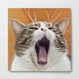 Fury of a Tiny Lion Metal Print