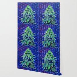 Purple Kush Wallpaper