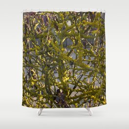 Moss in the Spring Shower Curtain