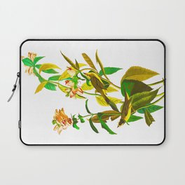 Green Black-capt Flycatcher Laptop Sleeve