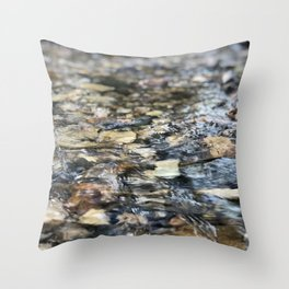 Pebble Creek Throw Pillow