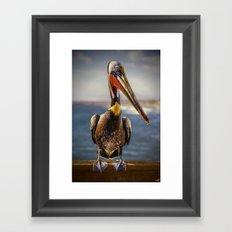 Peter Pelican Portrait Framed Art Print