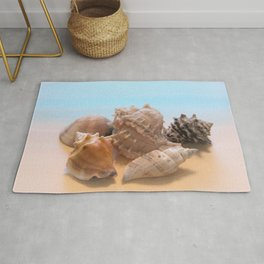 A Collection of Sea Shells Rug