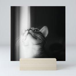 Looking Into The Light Mini Art Print
