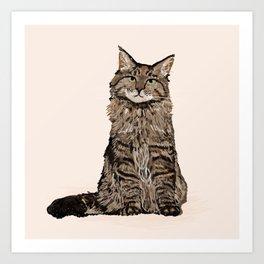 Maine Coon sitting cat portrait cute cat lady gift idea for cat owner cat lover animal pet friendly  Art Print
