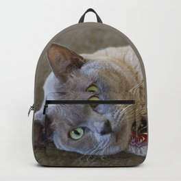Lilac Burmese Backpack
