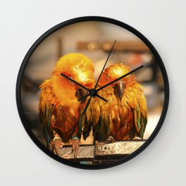 couple parrot photography Wall Clock