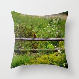 Robin in Garden Throw Pillow