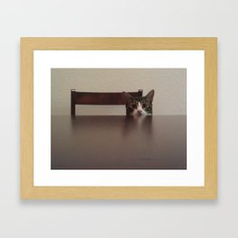 Peek A Boo Framed Art Print