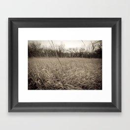 Dark Plains Framed Art Print