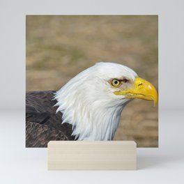 Alaskan Bald_Eagle Profile Mini Art Print
